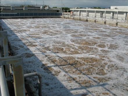 Công nghệ xử lý nước thải điển hình xử dụng trong thực tế