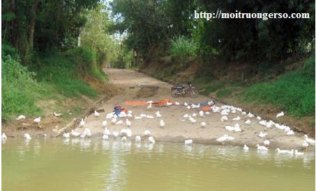báo động bảo vệ ô nhiễm nguồn nước - sông đồng Nai bị ô nhiễm vì nước thải sinh hoạt, nước thải bệnh viện tiêu chuẩn kém đổ vào