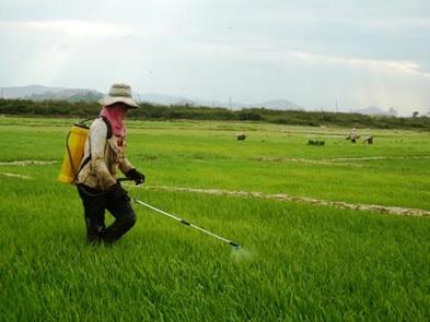 Xử lý nước thải sinh hoạt tại các vùng nông thôn