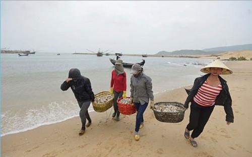 những sai phạm của Formosa Hà Tĩnh gây ảnh hưởng nghiêm trọng với cuộc sống người dân các tỉnh vên biển miền Trung